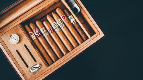 Cave à cigare et cigares pour les débutants